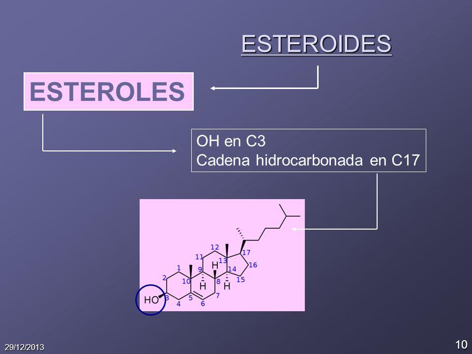 10 29/12/2013 ESTEROIDES ESTEROLES OH en C3 Cadena hidrocarbonada en C17
