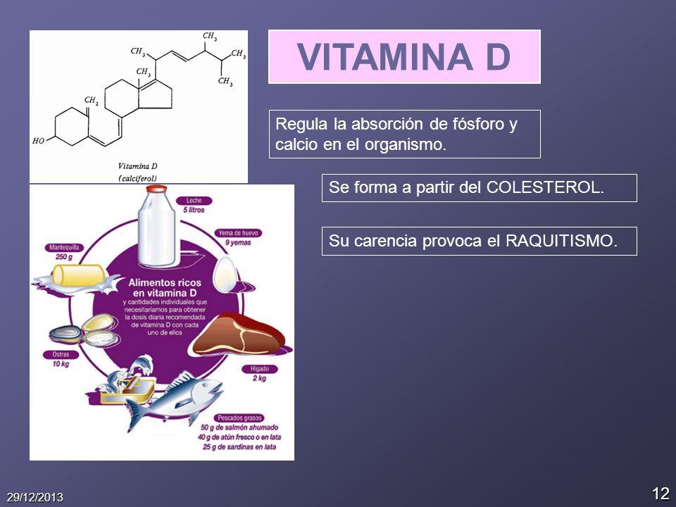 12 29/12/2013 VITAMINA D Regula la absorción de fósforo y calcio en el organismo. Se forma a partir del COLESTEROL. Su carencia provoca el RAQUITISMO.