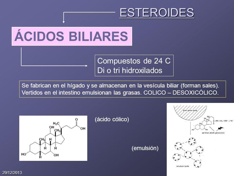 14 29/12/2013 ESTEROIDES ÁCIDOS BILIARES Compuestos de 24 C Di o tri hidroxilados Se fabrican en el hígado y se almacenan en la vesícula biliar (forma