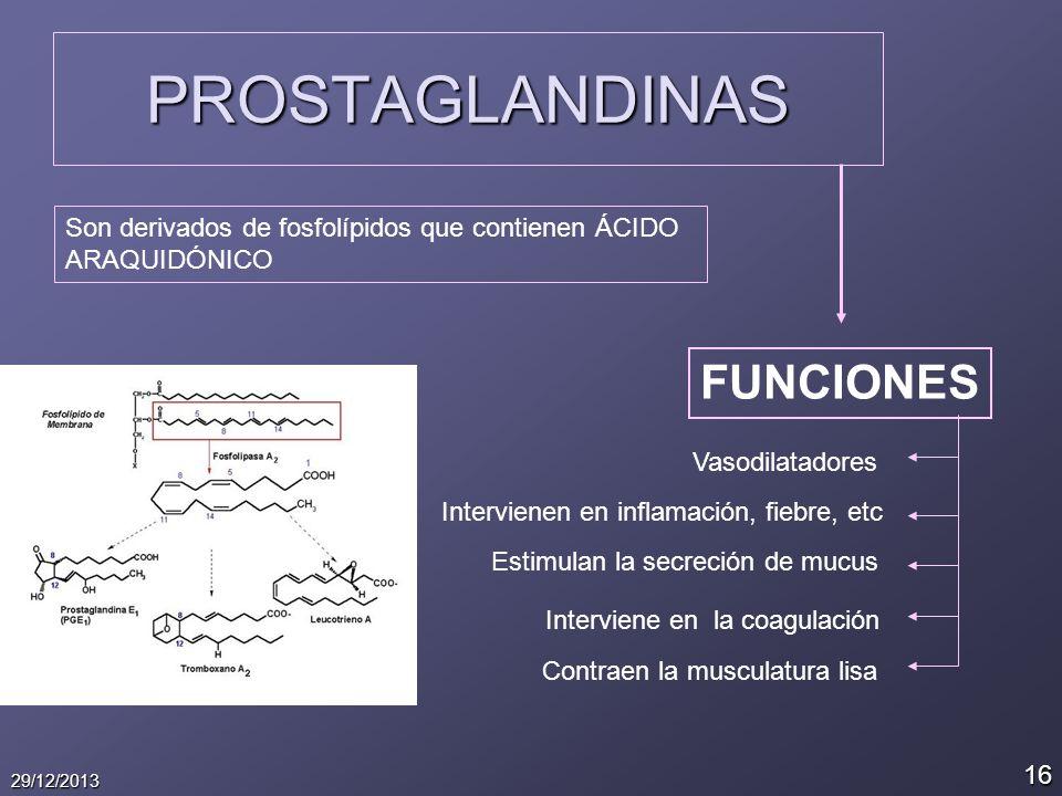 16 29/12/2013 PROSTAGLANDINAS Son derivados de fosfolípidos que contienen ÁCIDO ARAQUIDÓNICO FUNCIONES Vasodilatadores Intervienen en inflamación, fie