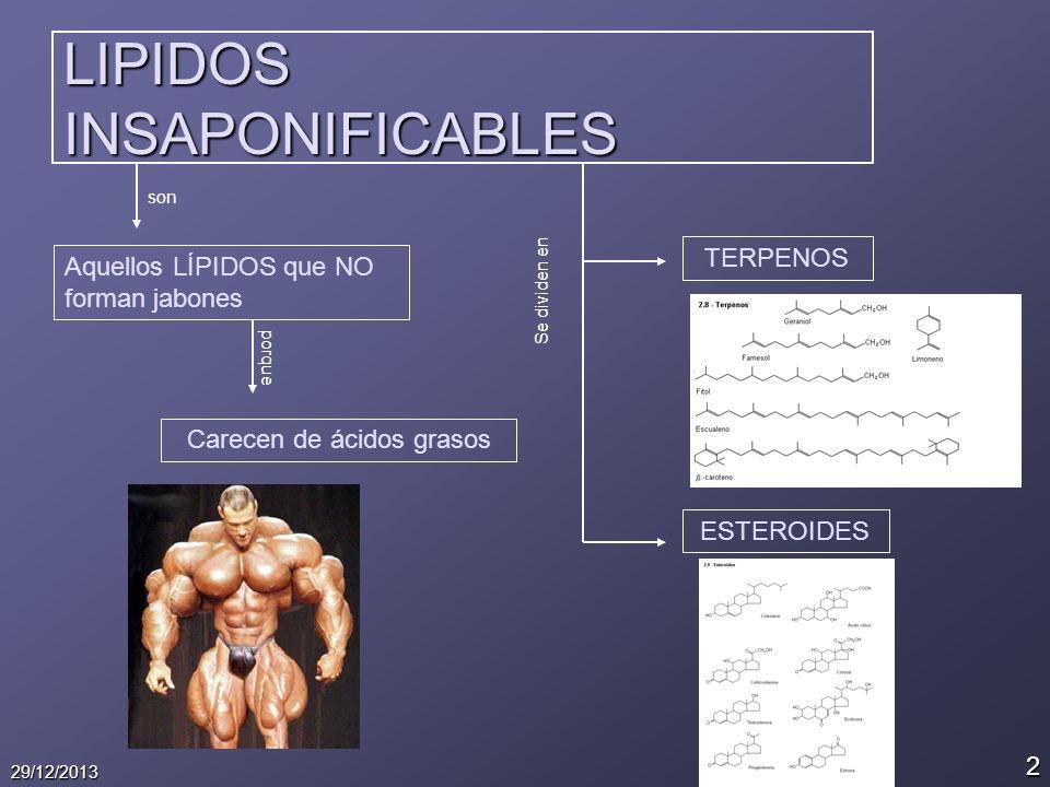 2 29/12/2013 LIPIDOS INSAPONIFICABLES son Aquellos LÍPIDOS que NO forman jabones porque Carecen de ácidos grasos Se dividen en TERPENOS ESTEROIDES