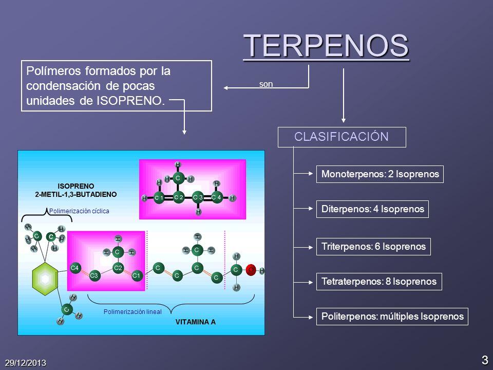 3 29/12/2013 TERPENOS Polímeros formados por la condensación de pocas unidades de ISOPRENO. son Polimerización lineal Polimerización cíclica CLASIFICA