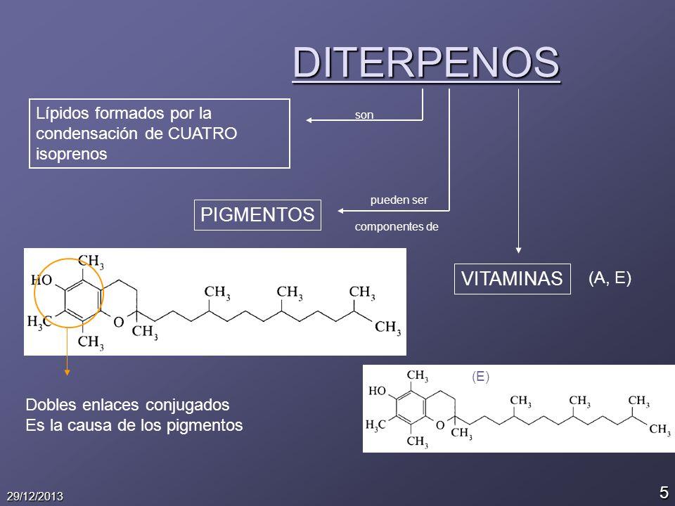 5 29/12/2013 DITERPENOS Lípidos formados por la condensación de CUATRO isoprenos son pueden ser PIGMENTOS Dobles enlaces conjugados Es la causa de los