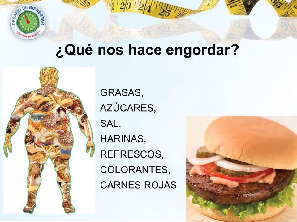 ¿Qué nos hace engordar? GRASAS, AZÚCARES, SAL, HARINAS, REFRESCOS, COLORANTES, CARNES ROJAS.