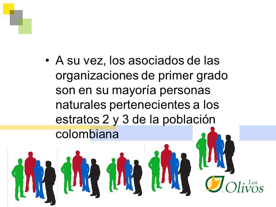 A su vez, los asociados de las organizaciones de primer grado son en su mayoría personas naturales pertenecientes a los estratos 2 y 3 de la población