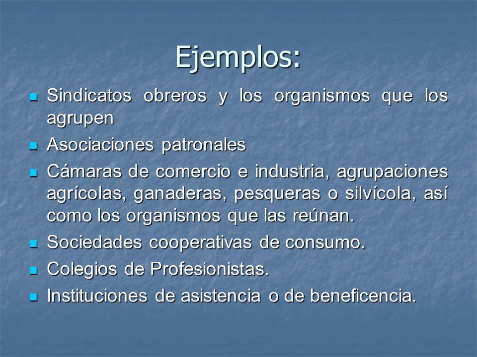 Ejemplos: Sindicatos obreros y los organismos que los agrupen Sindicatos obreros y los organismos que los agrupen Asociaciones patronales Asociaciones