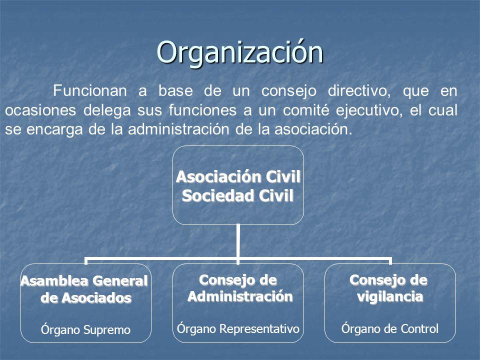 Organización Funcionan a base de un consejo directivo, que en ocasiones delega sus funciones a un comité ejecutivo, el cual se encarga de la administr