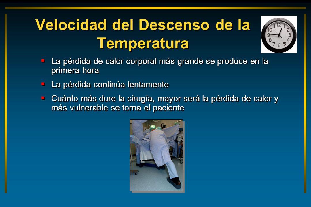 Velocidad del Descenso de la Temperatura La pérdida de calor corporal más grande se produce en la primera hora La pérdida continúa lentamente Cuánto m