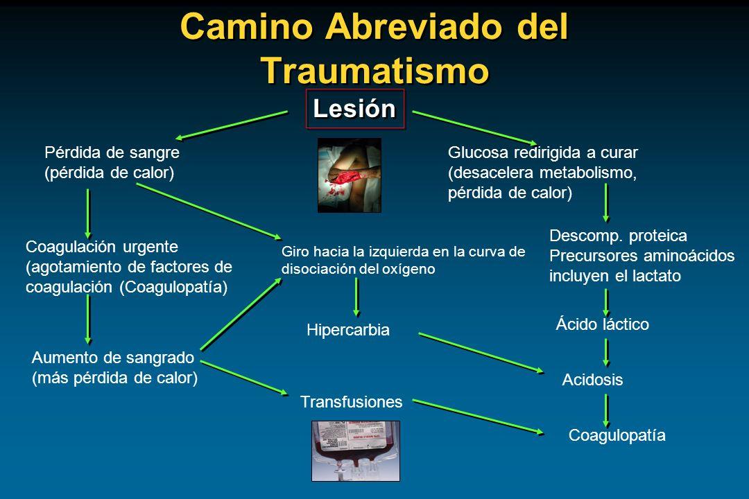 Camino Abreviado del Traumatismo Lesión Pérdida de sangre (pérdida de calor) Coagulación urgente (agotamiento de factores de coagulación (Coagulopatía