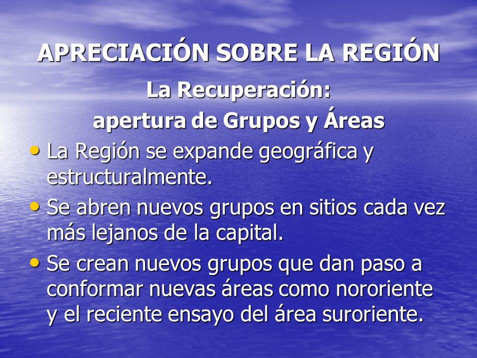 APRECIACIÓN SOBRE LA REGIÓN La Recuperación: apertura de Grupos y Áreas La Región se expande geográfica y estructuralmente. La Región se expande geogr