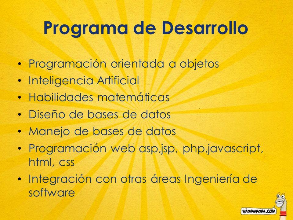 12 Programa de Desarrollo Programación orientada a objetos Inteligencia Artificial Habilidades matemáticas Diseño de bases de datos Manejo de bases de datos Programación web asp,jsp, php,javascript, html, css Integración con otras áreas Ingeniería de software
