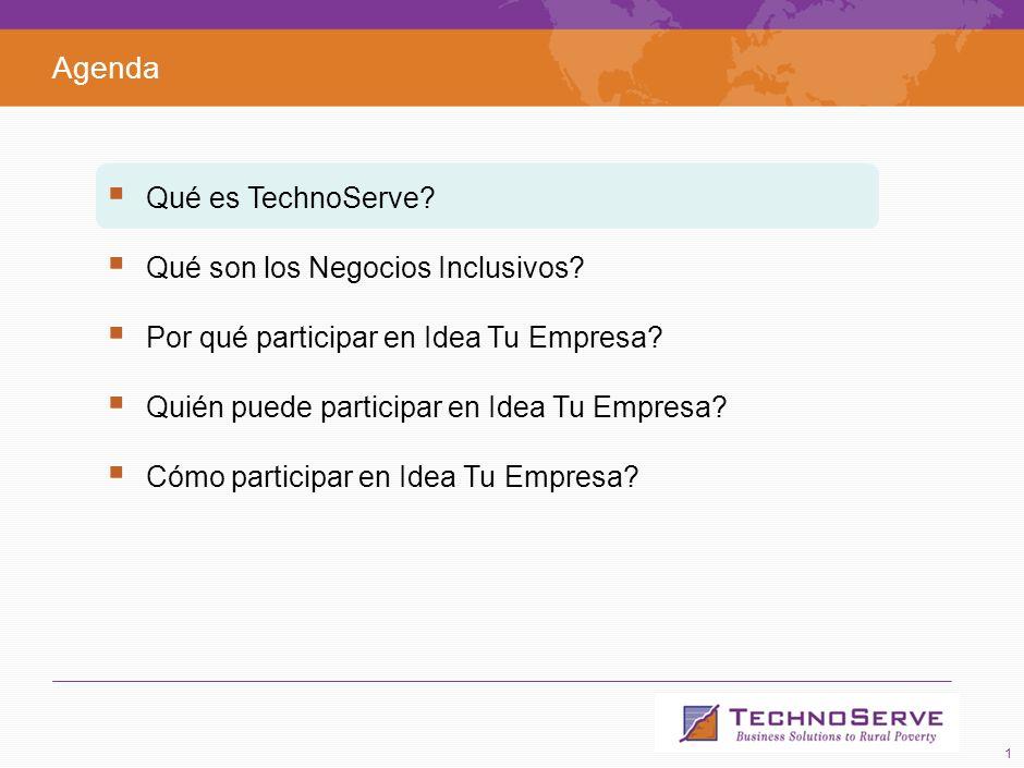 1 Agenda Qué es TechnoServe.Qué son los Negocios Inclusivos.