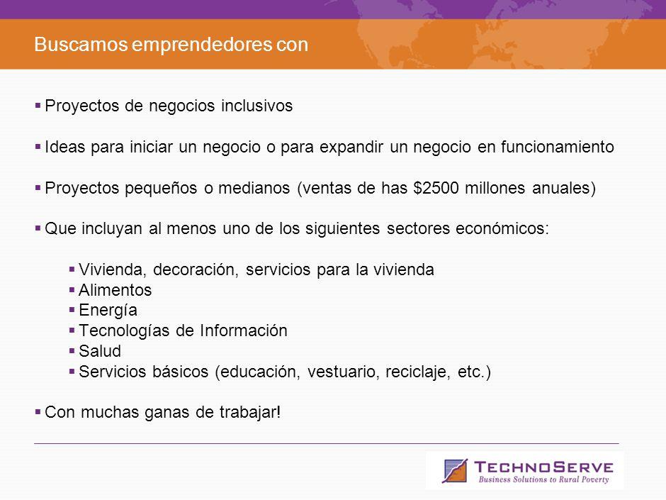 12 Agenda Qué es TechnoServe. Qué son los Negocios Inclusivos.