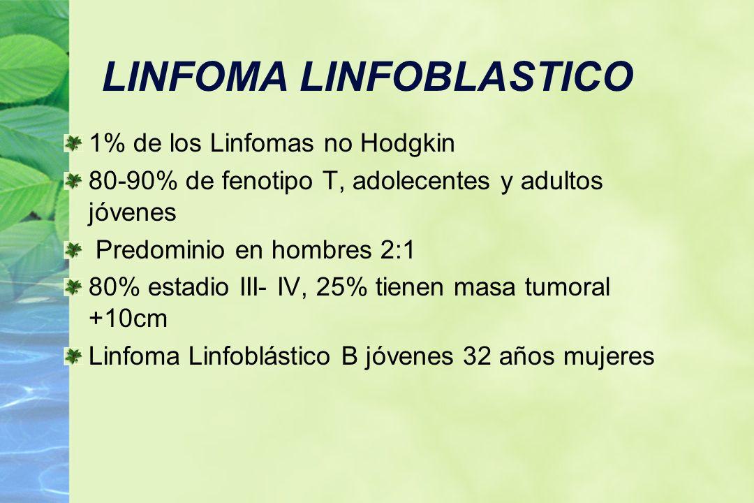 LINFOMA LINFOBLASTICO 1% de los Linfomas no Hodgkin 80-90% de fenotipo T, adolecentes y adultos jóvenes Predominio en hombres 2:1 80% estadio III- IV,