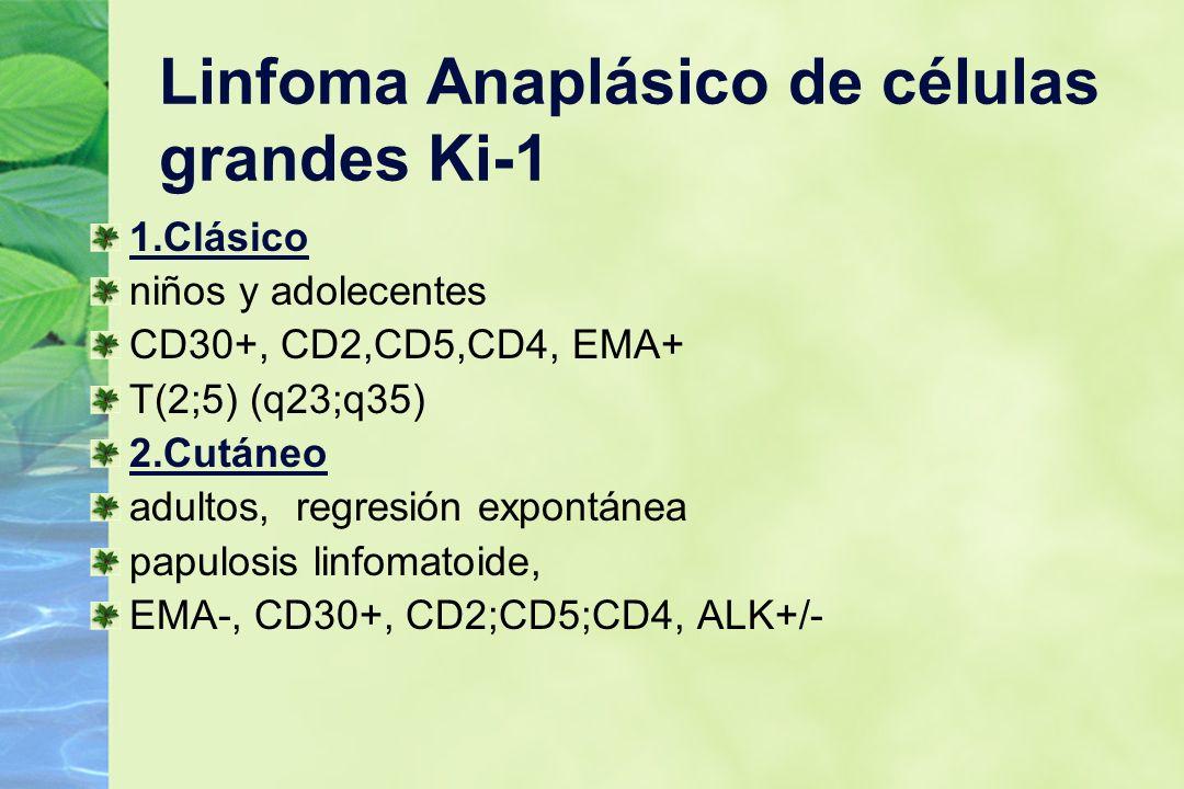Linfoma Anaplásico de células grandes Ki-1 1.Clásico niños y adolecentes CD30+, CD2,CD5,CD4, EMA+ T(2;5) (q23;q35) 2.Cutáneo adultos, regresión expont