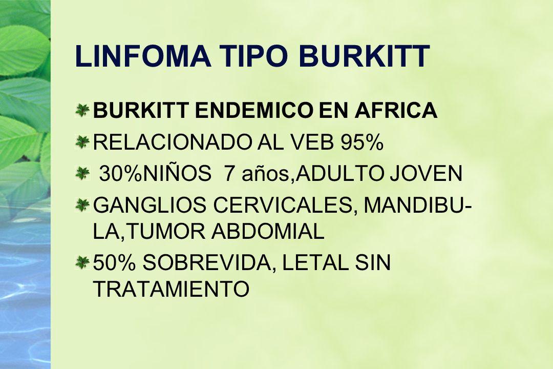 LINFOMA TIPO BURKITT BURKITT ENDEMICO EN AFRICA RELACIONADO AL VEB 95% 30%NIÑOS 7 años,ADULTO JOVEN GANGLIOS CERVICALES, MANDIBU- LA,TUMOR ABDOMIAL 50