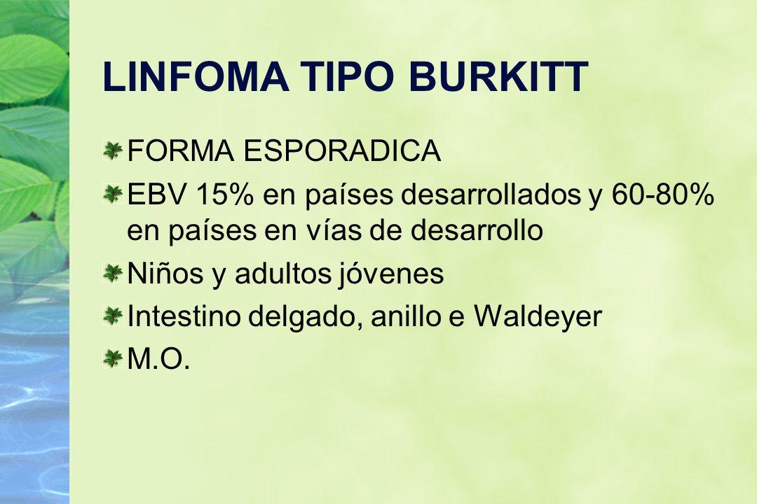 LINFOMA TIPO BURKITT FORMA ESPORADICA EBV 15% en países desarrollados y 60-80% en países en vías de desarrollo Niños y adultos jóvenes Intestino delga