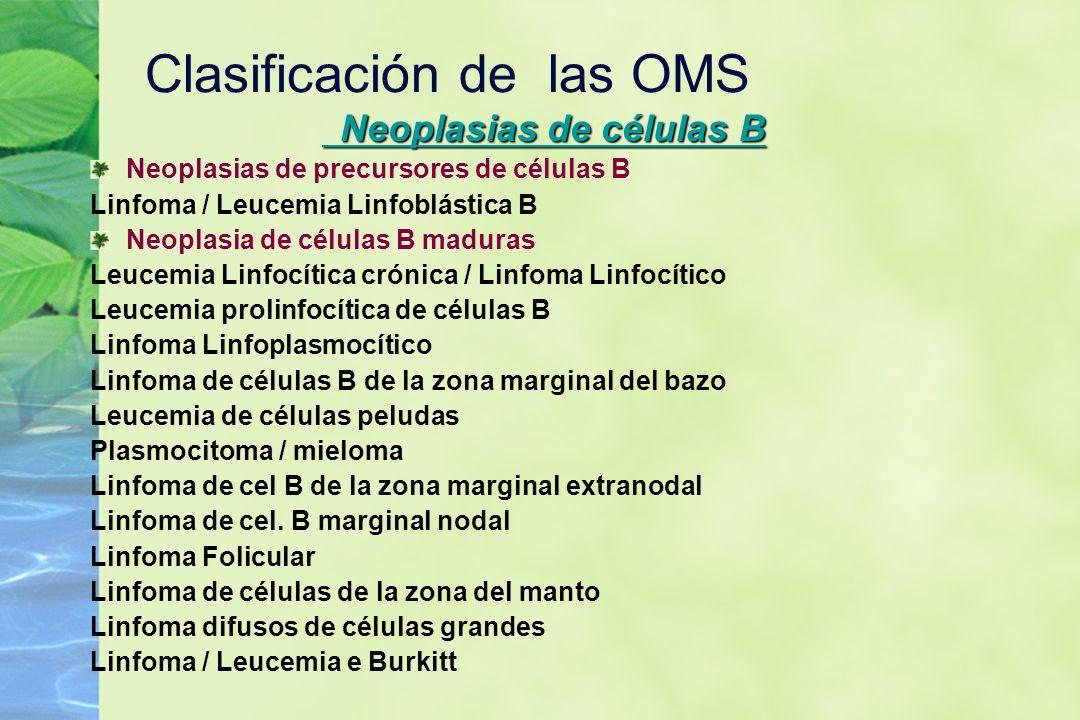 Clasificación de las OMS Neoplasias de células B Neoplasias de células B Neoplasias de precursores de células B Linfoma / Leucemia Linfoblástica B Neo
