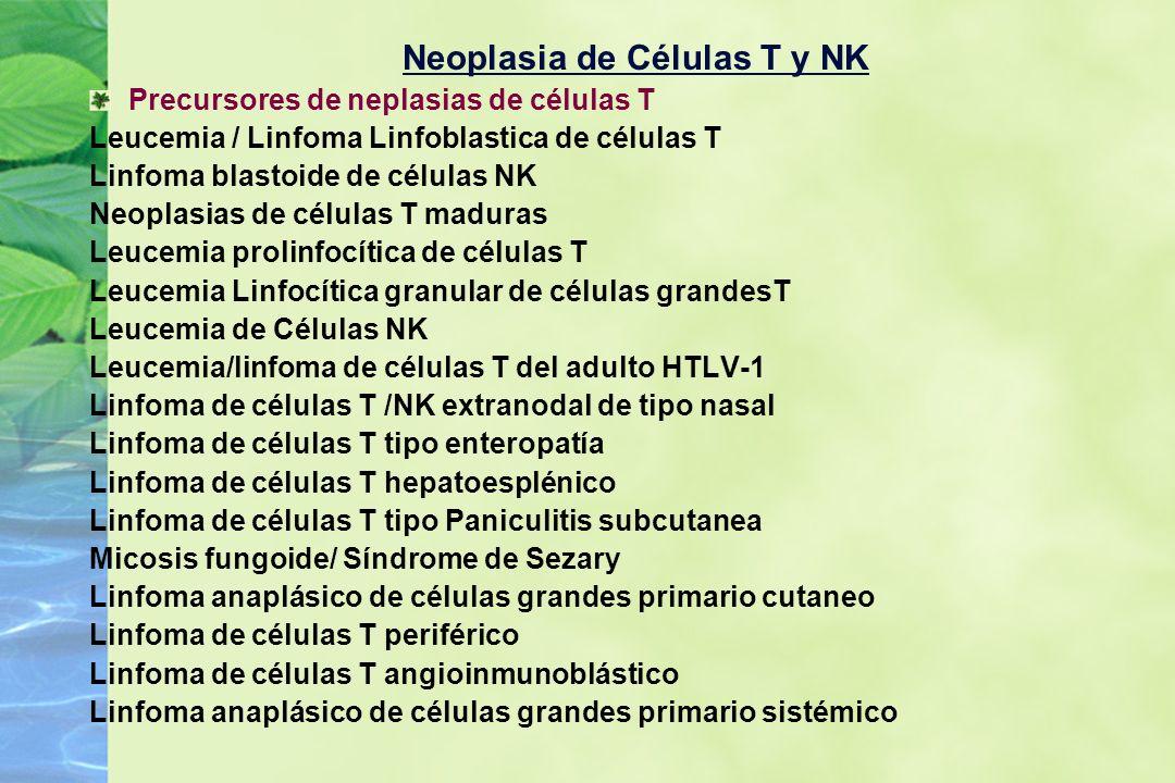 Neoplasia de Células T y NK Precursores de neplasias de células T Leucemia / Linfoma Linfoblastica de células T Linfoma blastoide de células NK Neopla