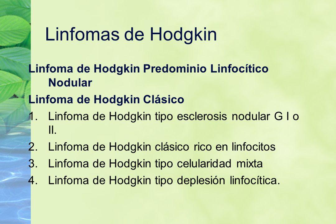 Linfomas de Hodgkin Linfoma de Hodgkin Predominio Linfocítico Nodular Linfoma de Hodgkin Clásico 1.Linfoma de Hodgkin tipo esclerosis nodular G I o II