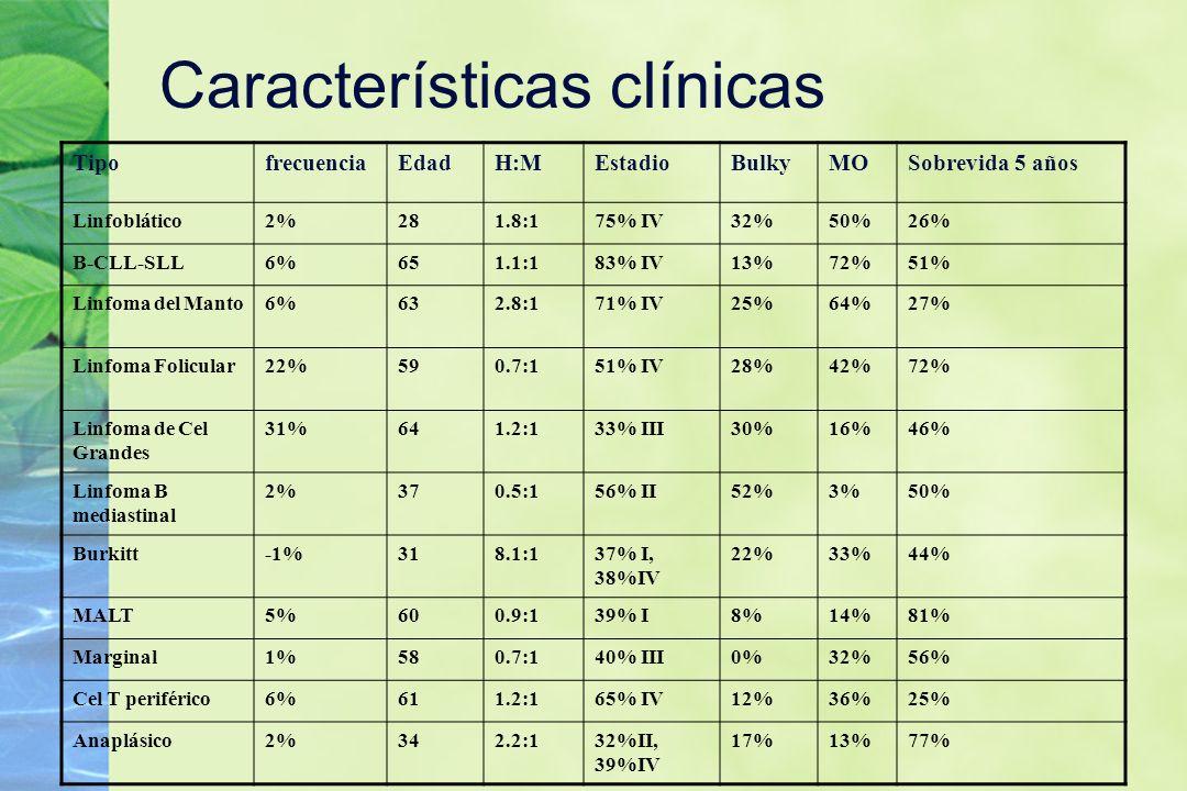 Características clínicas TipofrecuenciaEdadH:MEstadioBulkyMOSobrevida 5 años Linfoblático2%281.8:175% IV32%50%26% B-CLL-SLL6%651.1:183% IV13%72%51% Li