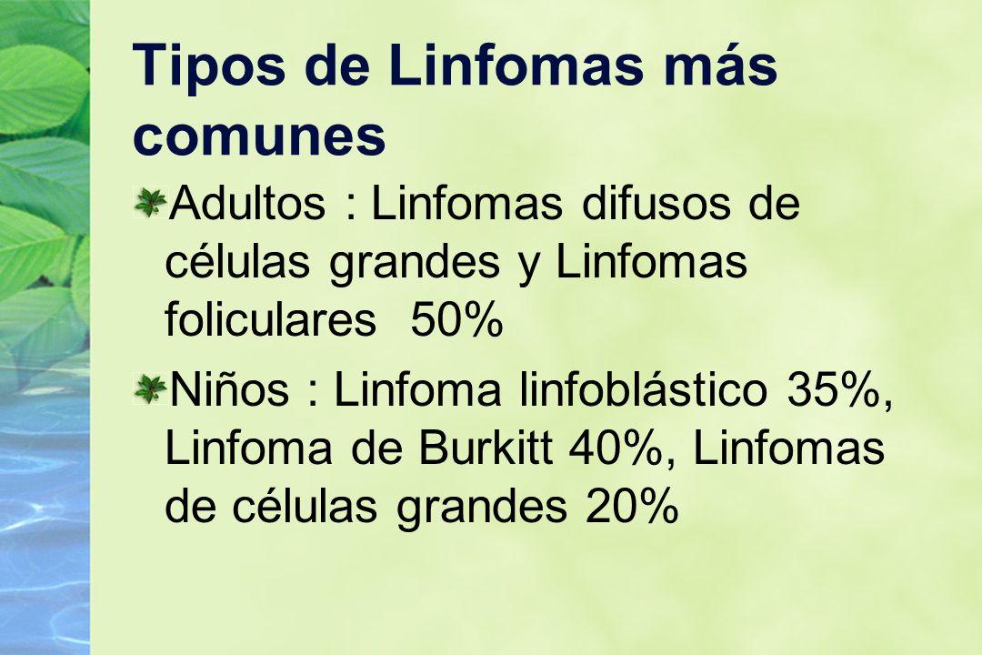 Tipos de Linfomas más comunes Adultos : Linfomas difusos de células grandes y Linfomas foliculares 50% Niños : Linfoma linfoblástico 35%, Linfoma de B