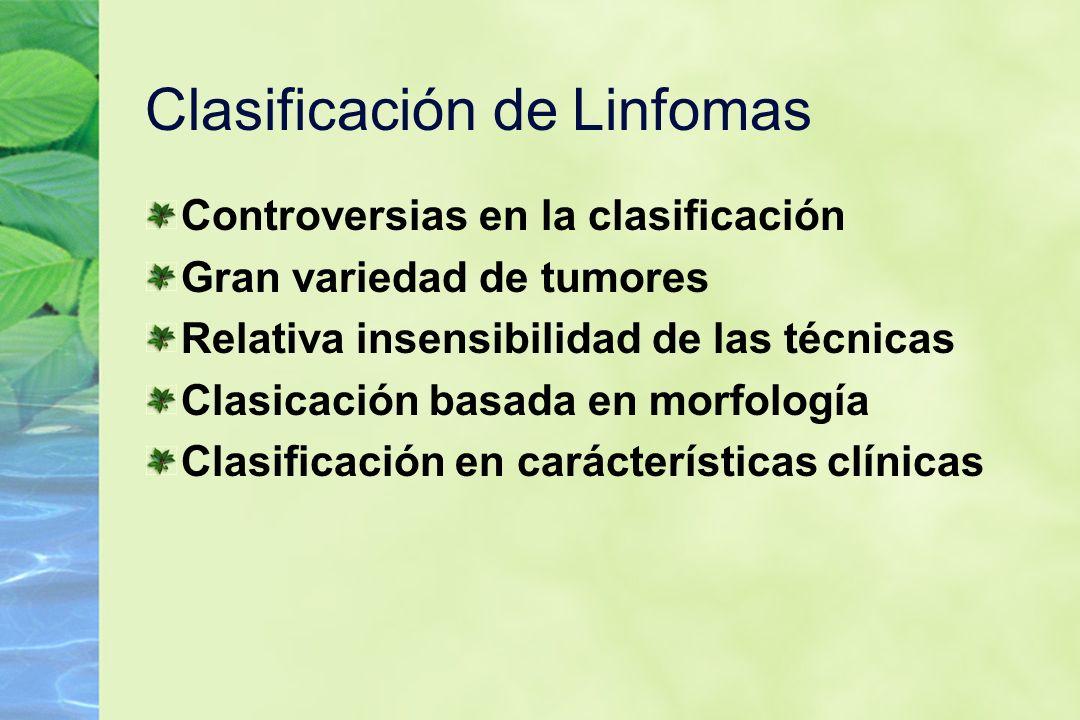 Clasificación de Linfomas Controversias en la clasificación Gran variedad de tumores Relativa insensibilidad de las técnicas Clasicación basada en mor