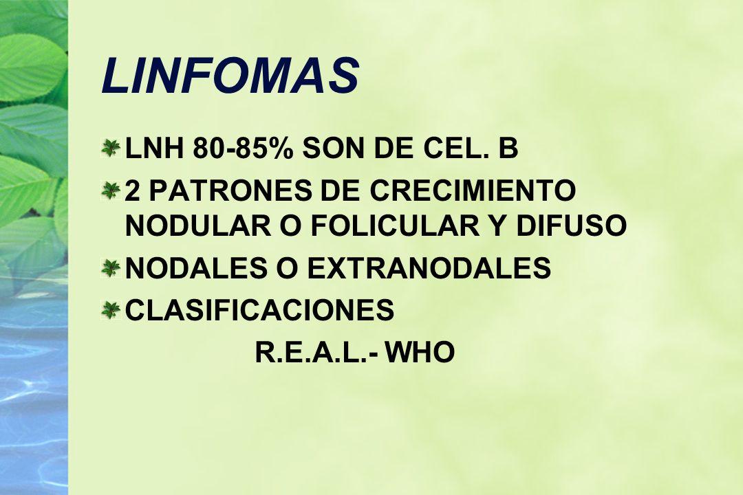 LINFOMAS LNH 80-85% SON DE CEL. B 2 PATRONES DE CRECIMIENTO NODULAR O FOLICULAR Y DIFUSO NODALES O EXTRANODALES CLASIFICACIONES R.E.A.L.- WHO