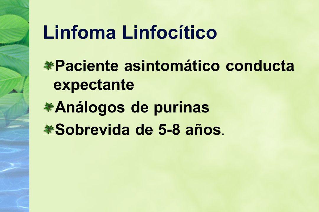 Linfoma Linfocítico Paciente asintomático conducta expectante Análogos de purinas Sobrevida de 5-8 años.