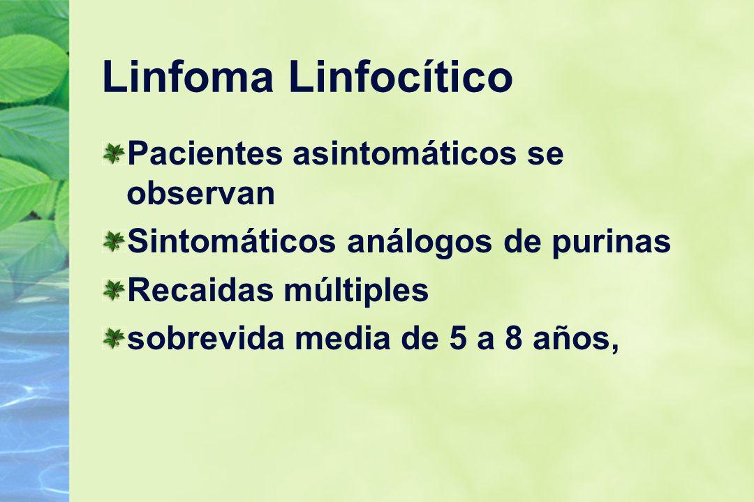 Linfoma Linfocítico Pacientes asintomáticos se observan Sintomáticos análogos de purinas Recaidas múltiples sobrevida media de 5 a 8 años,