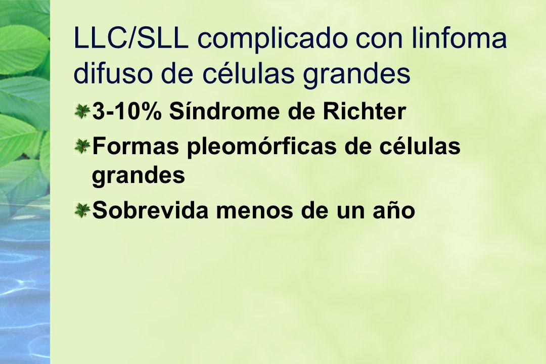 LLC/SLL complicado con linfoma difuso de células grandes 3-10% Síndrome de Richter Formas pleomórficas de células grandes Sobrevida menos de un año