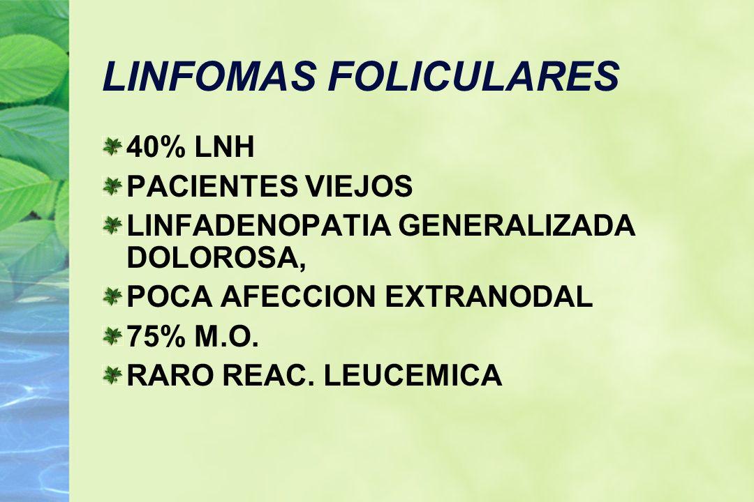 LINFOMAS FOLICULARES 40% LNH PACIENTES VIEJOS LINFADENOPATIA GENERALIZADA DOLOROSA, POCA AFECCION EXTRANODAL 75% M.O. RARO REAC. LEUCEMICA