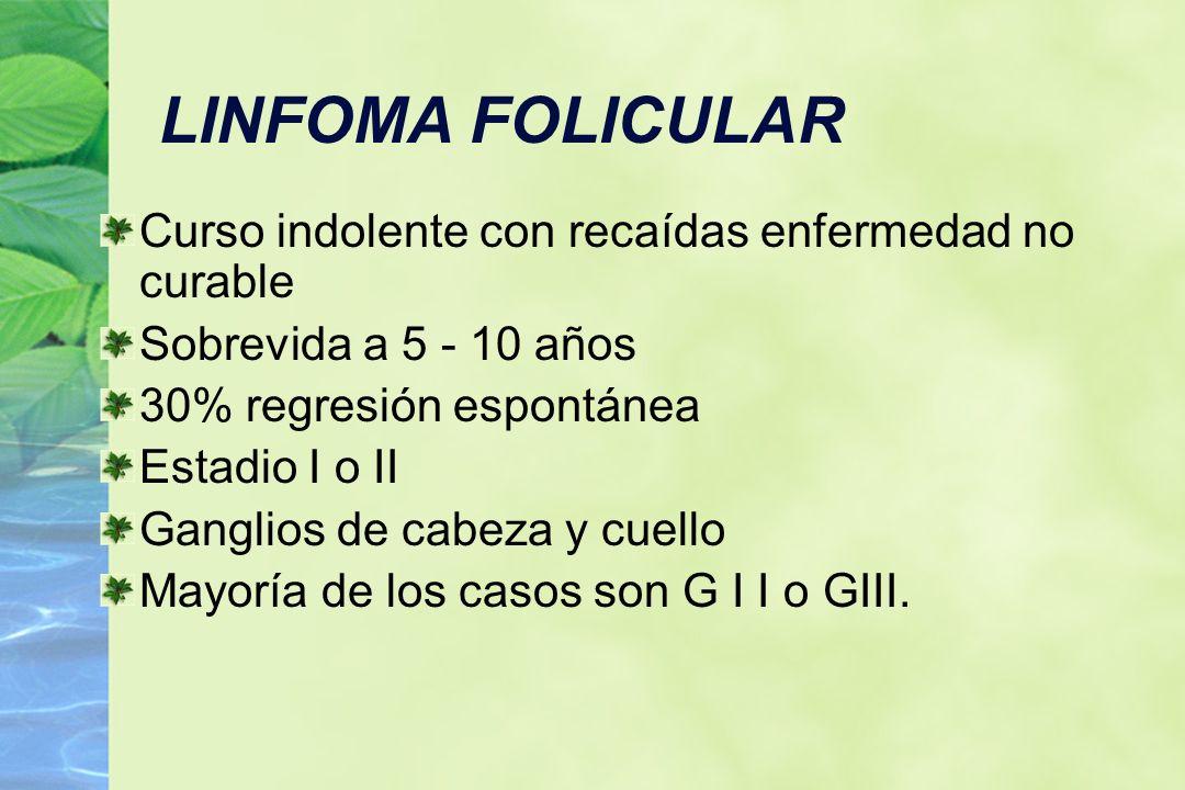 LINFOMA FOLICULAR Curso indolente con recaídas enfermedad no curable Sobrevida a 5 - 10 años 30% regresión espontánea Estadio I o II Ganglios de cabez