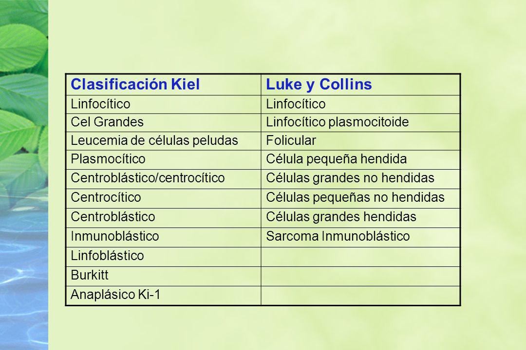 Clasificación KielLuke y Collins Linfocítico Cel GrandesLinfocítico plasmocitoide Leucemia de células peludasFolicular PlasmocíticoCélula pequeña hend