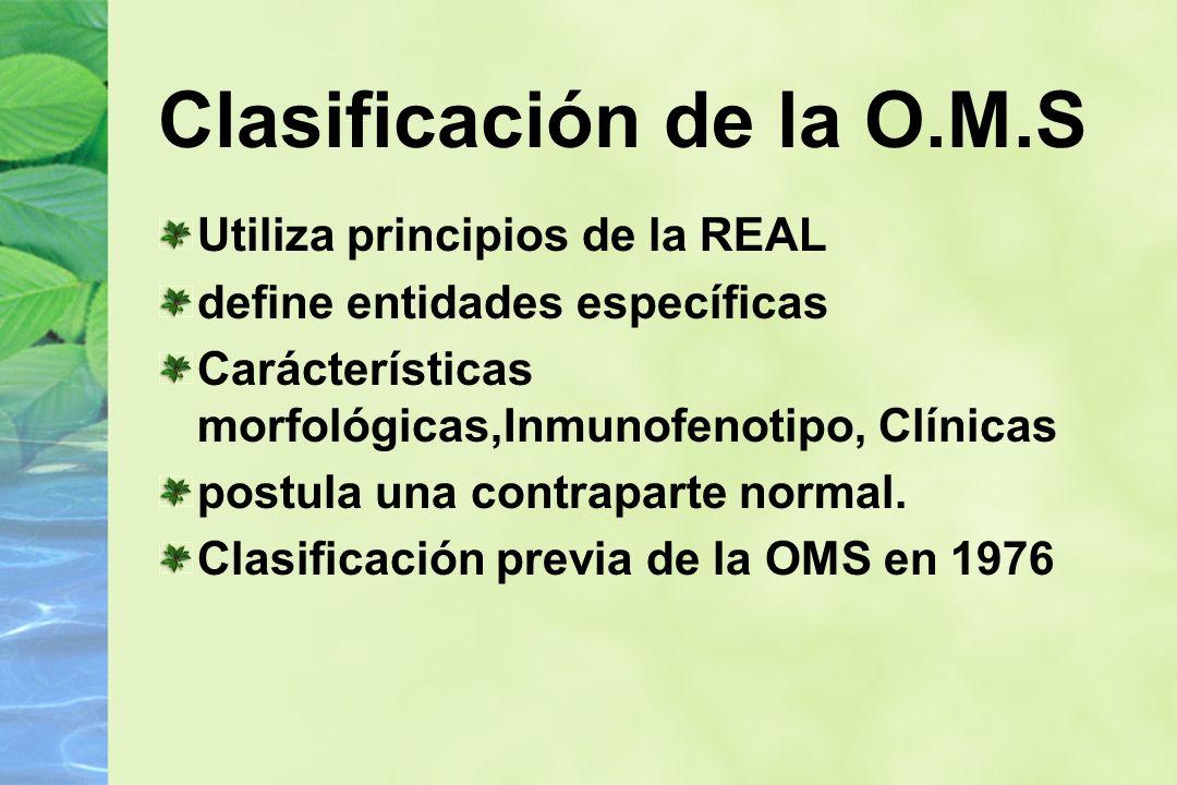 Clasificación de la O.M.S Utiliza principios de la REAL define entidades específicas Carácterísticas morfológicas,Inmunofenotipo, Clínicas postula una