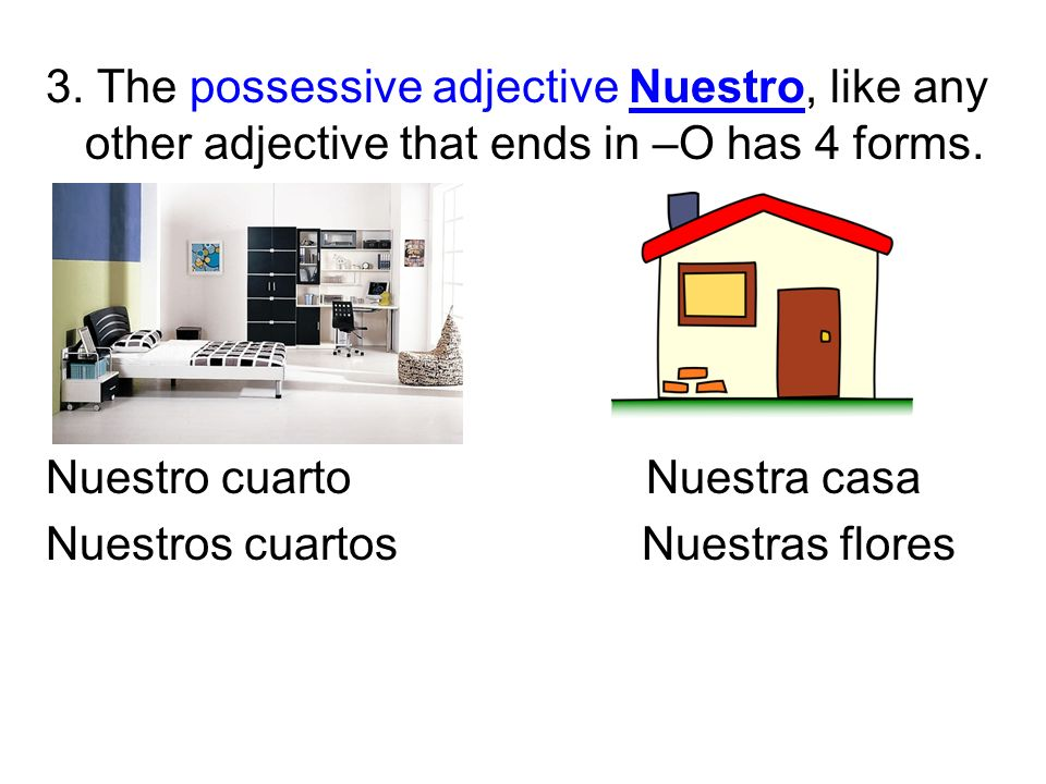 3. The possessive adjective Nuestro, like any other adjective that ends in –O has 4 forms. Nuestro cuarto Nuestra casa Nuestros cuartos Nuestras flore
