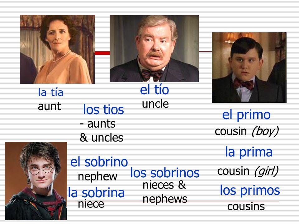 la tía aunt el tío uncle los tios - aunts & uncles el primo cousin (boy) la prima cousin (girl) los primos cousins el sobrino nephew la sobrina niece los sobrinos nieces & nephews