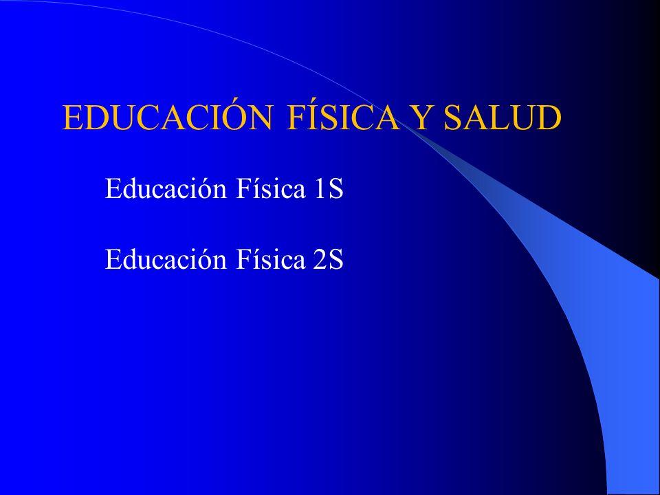 Cursos Electivos para las Clases de Negocio Organización y Gestión de Empresas Desarrollo Profesional Microsoft Word
