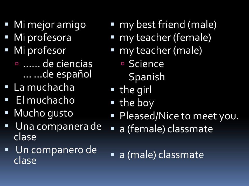Mi mejor amigo Mi profesora Mi profesor …… de ciencias … …de español La muchacha El muchacho Mucho gusto Una companera de clase Un companero de clase