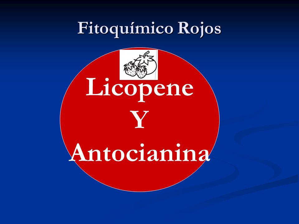 Fitoquímico Rojos Licopene Y Antocianina