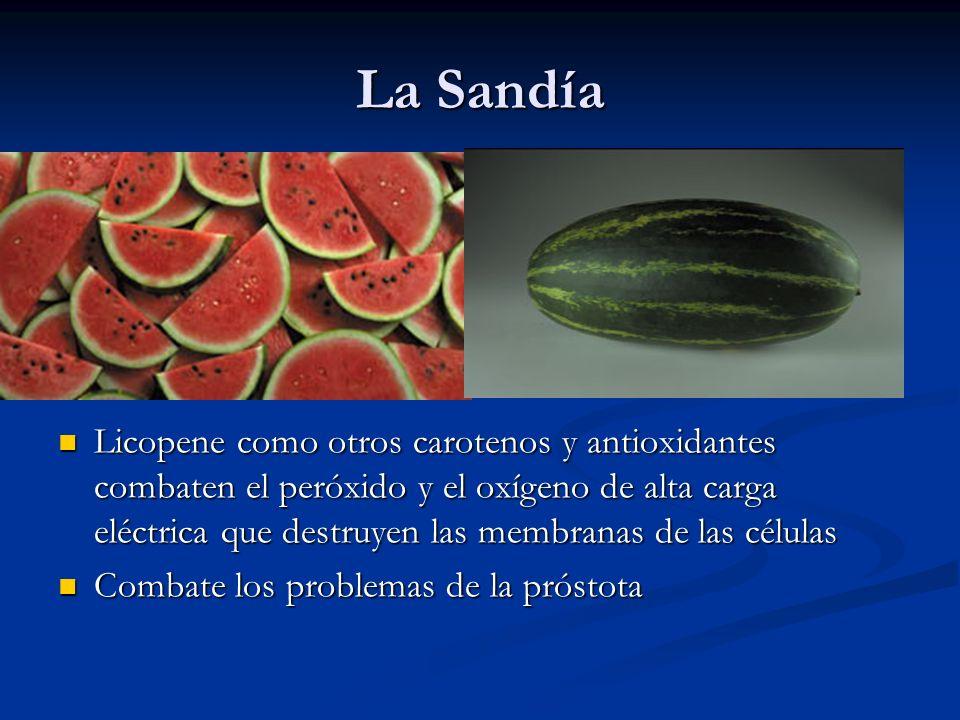 La Sandía Licopene como otros carotenos y antioxidantes combaten el peróxido y el oxígeno de alta carga eléctrica que destruyen las membranas de las c