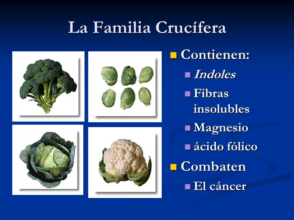 La Familia Crucífera Contienen: Indoles Fibras insolubles Magnesio ácido fólico Combaten El cáncer