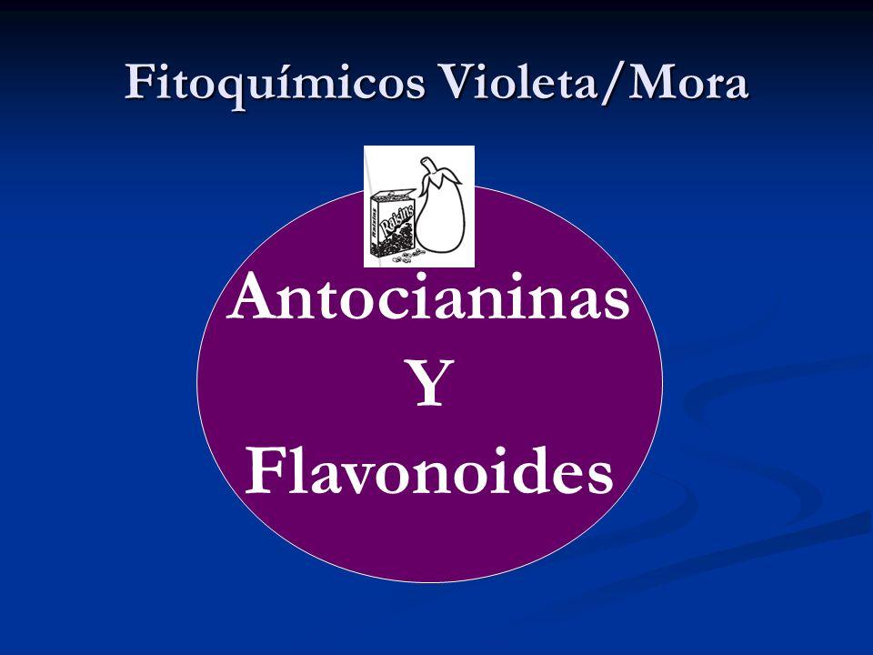Fitoquímicos Violeta/Mora Antocianinas Y Flavonoides