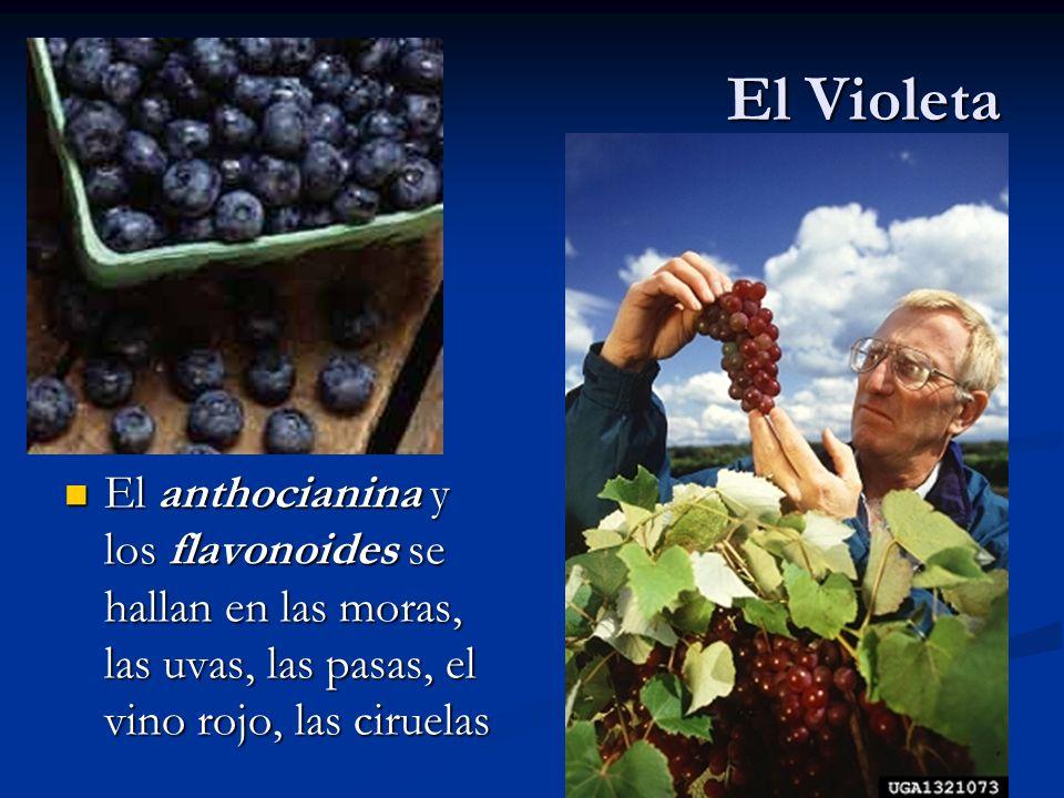 El Violeta El anthocianina y los flavonoides se hallan en las moras, las uvas, las pasas, el vino rojo, las ciruelas