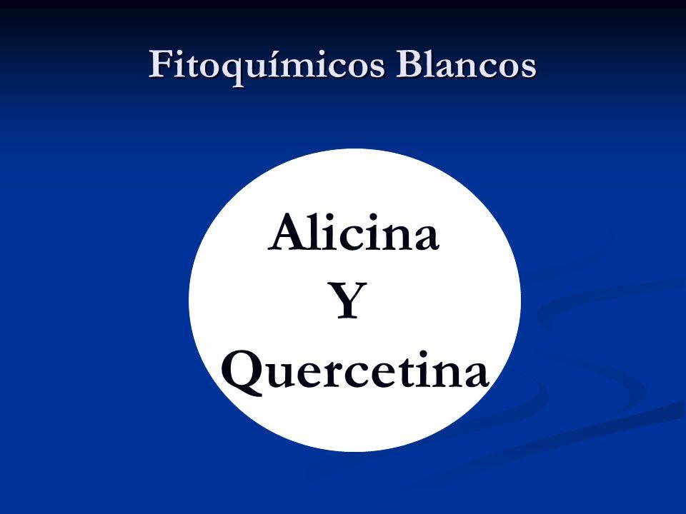 Fitoquímicos Blancos Alicina Y Quercetina