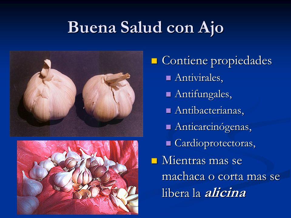 Buena Salud con Ajo Contiene propiedades Antivirales, Antifungales, Antibacterianas, Anticarcinógenas, Cardioprotectoras, Mientras mas se machaca o co