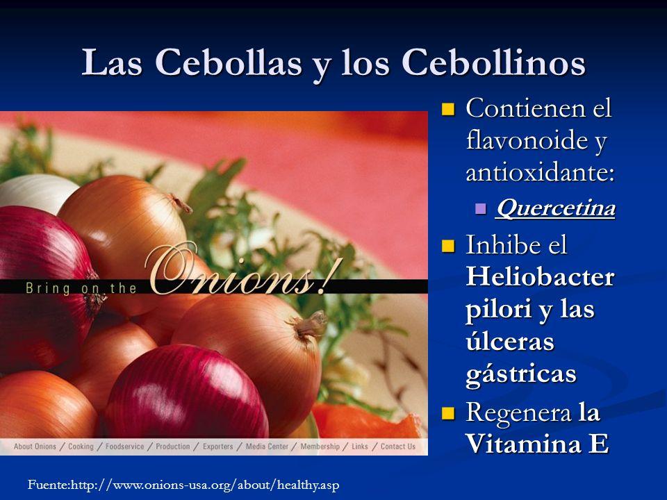 Las Cebollas y los Cebollinos Contienen el flavonoide y antioxidante: Quercetina Inhibe el Heliobacter pilori y las úlceras gástricas Regenera la Vita