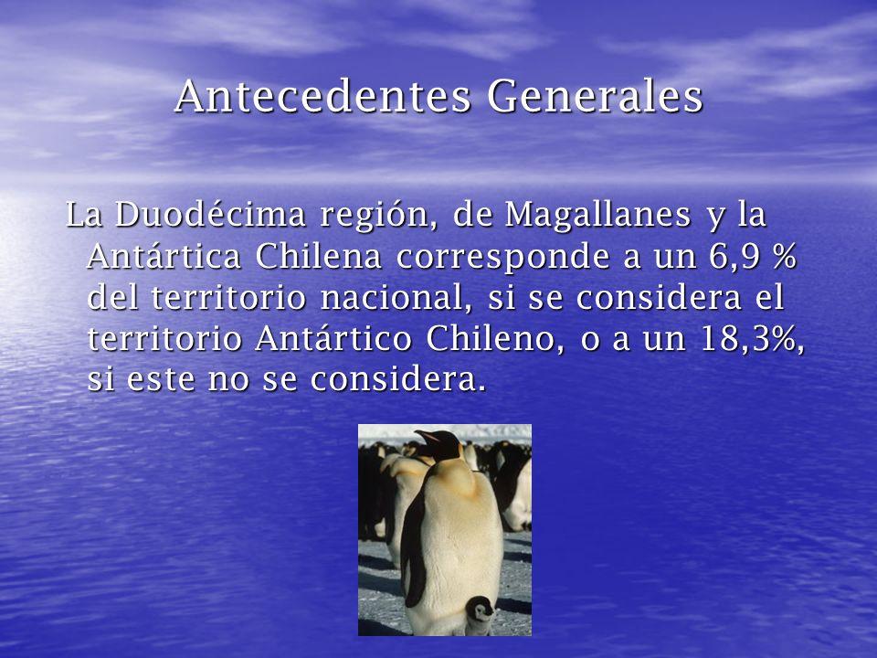 Un poco de Historia La XII Región de Magallanes y de la Antártica Chilena es la más austral de las quince regiones en las que se encuentra dividido Chile.