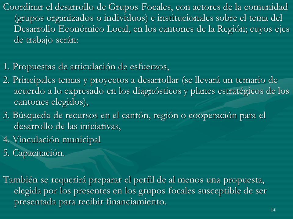 14 Coordinar el desarrollo de Grupos Focales, con actores de la comunidad (grupos organizados o individuos) e institucionales sobre el tema del Desarr