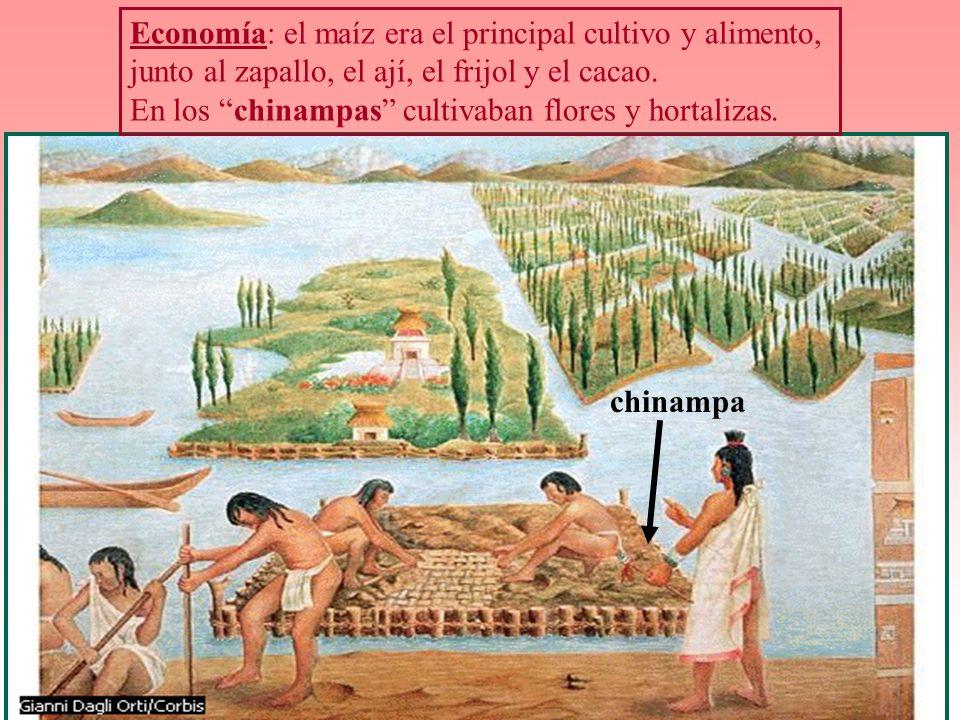 Economía: el maíz era el principal cultivo y alimento, junto al zapallo, el ají, el frijol y el cacao. En los chinampas cultivaban flores y hortalizas